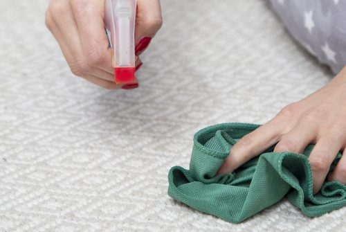 How rug cleaning is important and from where?