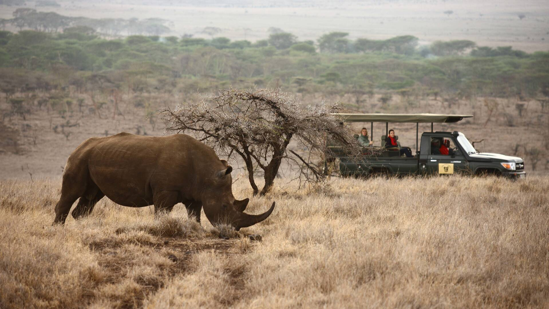 Perfect and Affordable Vacation Experience for Wildlife Enthusiasts
